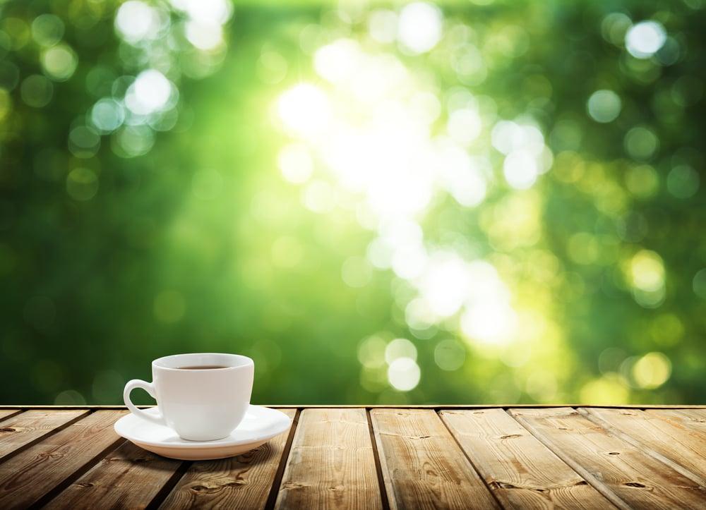 白いティーカップと木